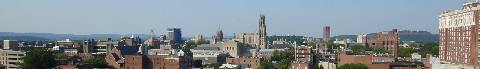 cropped-yale.png